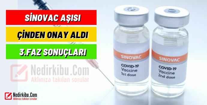 Sinovac Aşısının 60 Yaş Üzerindeki Etkileri Ortaya Çıktı