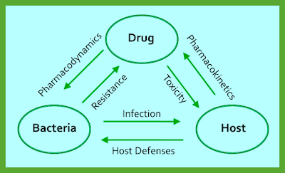 Basics_of_Antimicrobial_Therapy