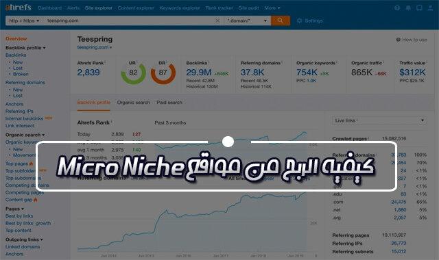 كيفية الربح من مواقع Micro Niche