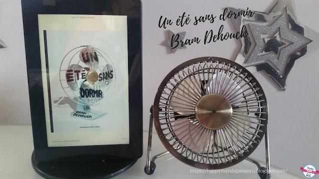 Un été sans dormir Bram Dehouck avis chroniques bookaddict