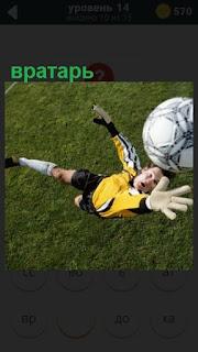 вратарь в прыжке ловит и выбивает мяч из ворот