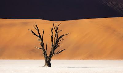 Kreatif dengan lensa tele / lensa panjang untuk fotografi landscape