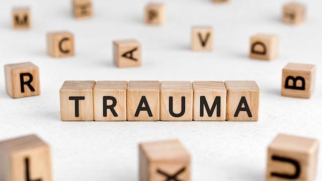 Dog Trauma
