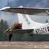 Vídeo registra momento em que urso se aproxima e resolve subir em avião; assista
