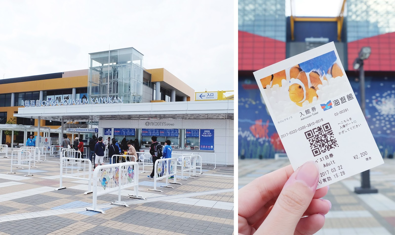 Osaka Aquarium Kaiyukan Tickets | www.bigdreamerblog.com