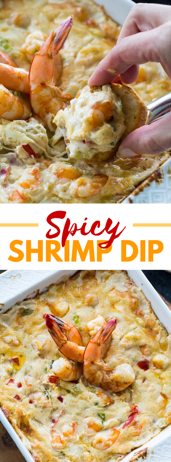 Spicy Shrimp Dip #appetizers #lunch