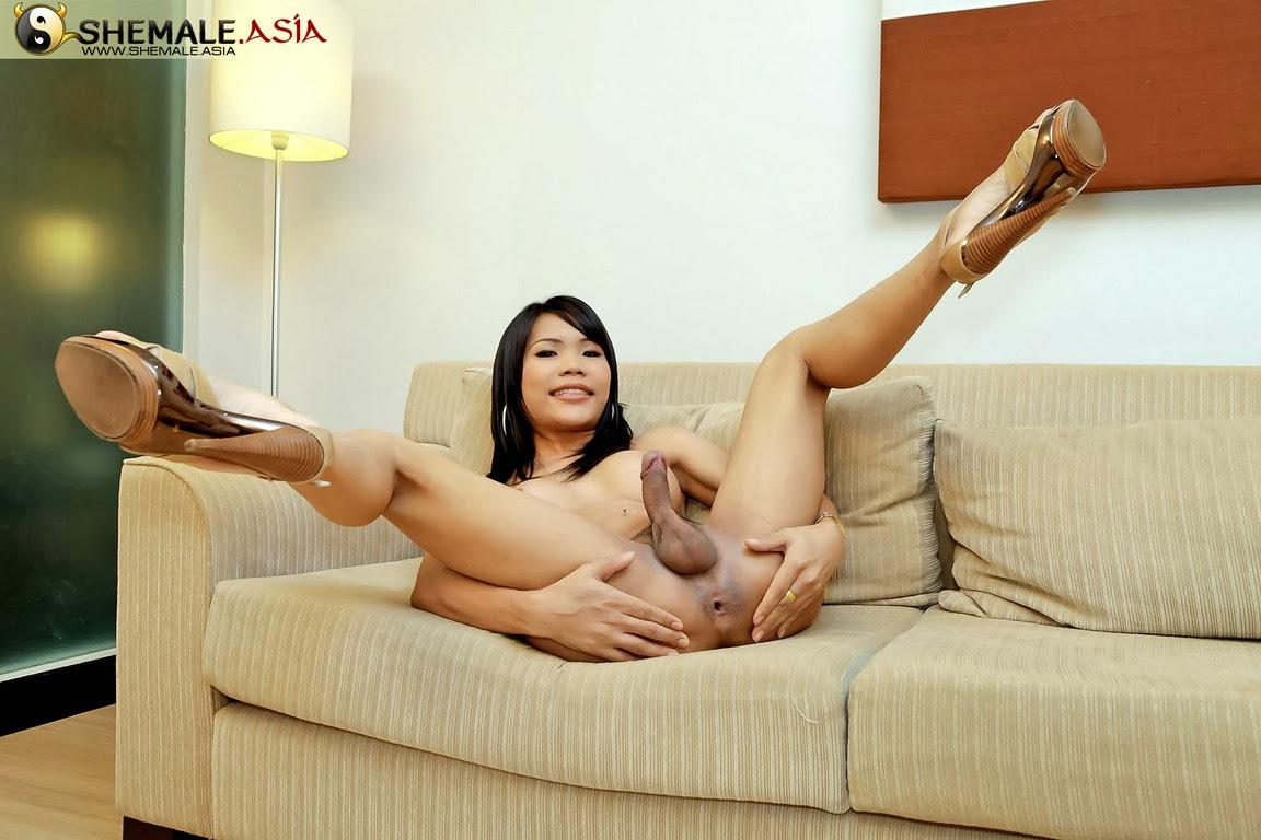 Transexuales asiaticas