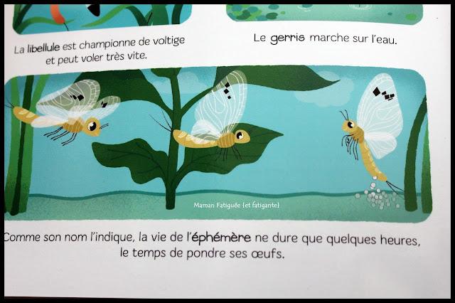 Les petites betes baby encyclopedie larousse