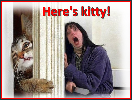 Photoshop Cat Picture • Scared woman! • Here's is kitty!