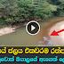 Slaughterhouse releasing cattle blood to Baduru Oya - Watch Video