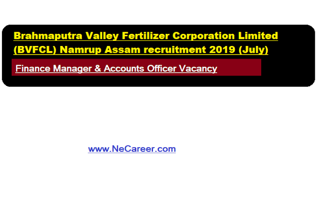 BVFCL Recruitment 2019 (July) | Finance Manager & Accounts Officer Vacancy at Namrup Assam