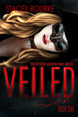 Book Review, Veiled, The Veiled Series, Stacey Rourke