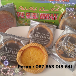 Pie Susu Dhian Dengan Aneka Rasa