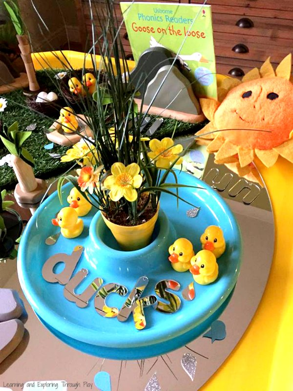 Duck Themed Spring Tuff Tray