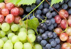 Benefits of grapes for healthy skin and body