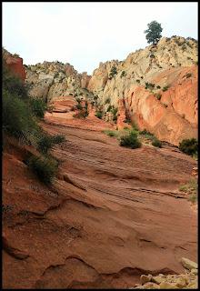 Canyon Walls at Red Hallow