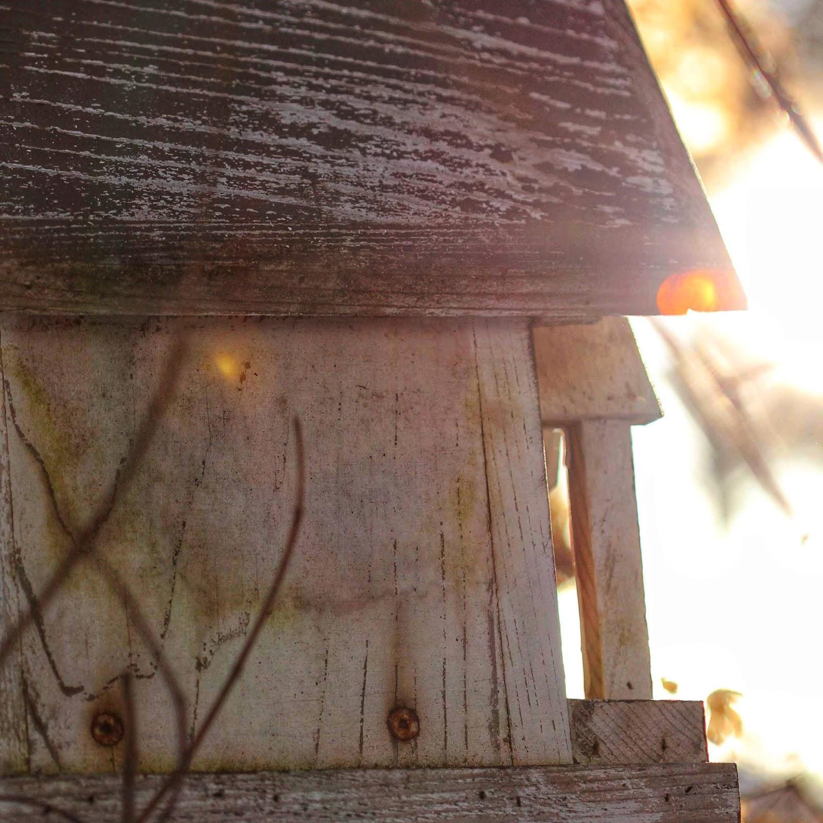 old birdhouse in winter light from www.ruralmag.com