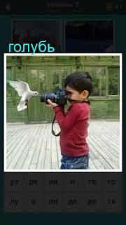 мальчик фотографирует голубя в полете 667 слов 3 уровень
