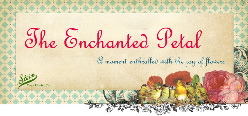 The Enchanted  Petal