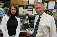 Researchers Olga A. Cherepanova, PhD, and Gary K. Owens, PhD, found that a particular gene was vital in heart attack and stroke prevention