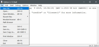 Opens python 3.7.5's built-in editor (IDE)
