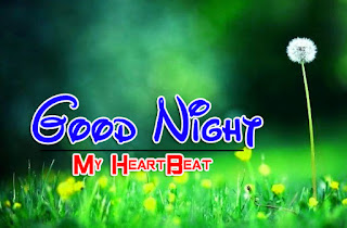 Latest Beautiful Good Night Wallpaper Free Download %2B97
