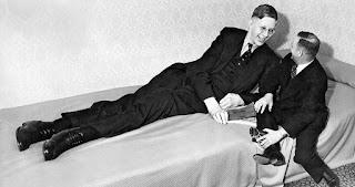El hombre más alto del mundo. Quien ha sido las persona mal alta del mundo. Robert Wadlow