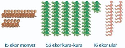 Ada 15 ekor monyet, 53 ekor kura-kura, dan 16 ekor ular www.jokowidodo-marufamin.com