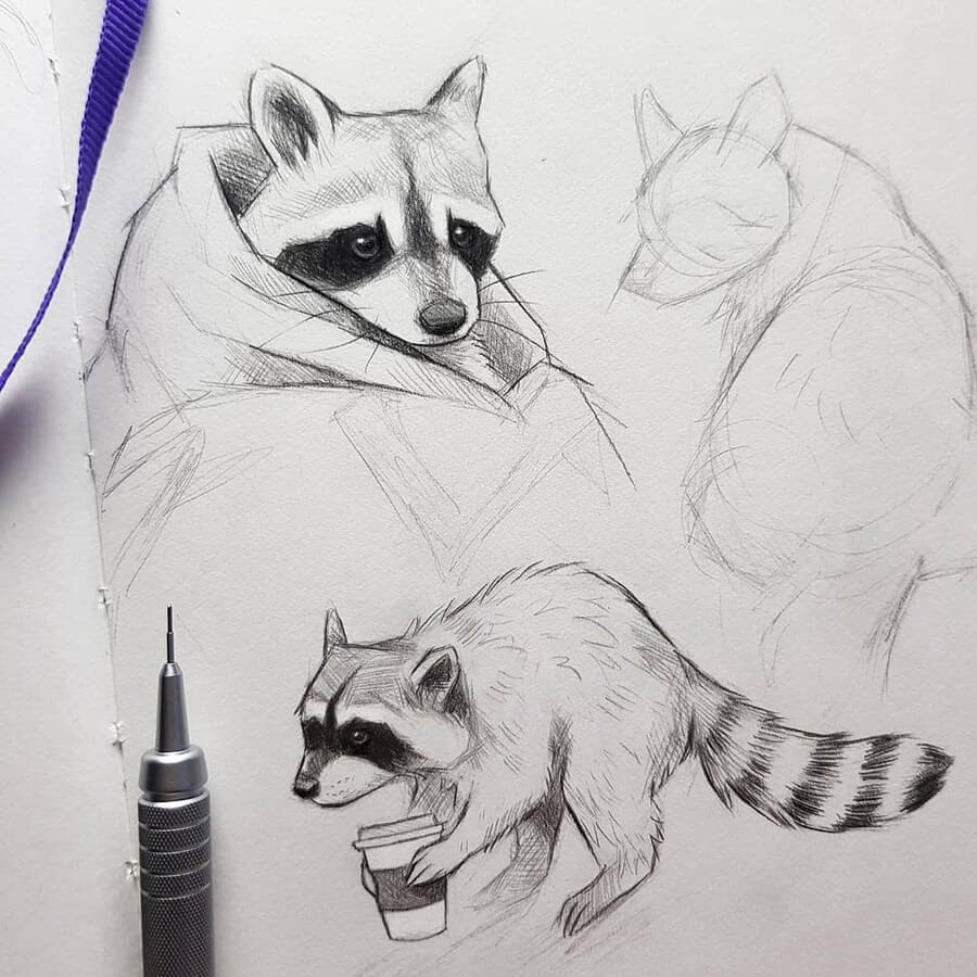 01-Coffee-raccoon-Kleevia-www-designstack-co