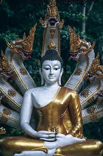 भगवान विष्णु के सातवे अवतार: गौतम बुद्ध। Gautam Buddha avatar of lord Vishnu.