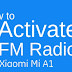 How to Active FM Radio?