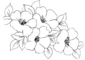 como pintar flor pintura em tecido