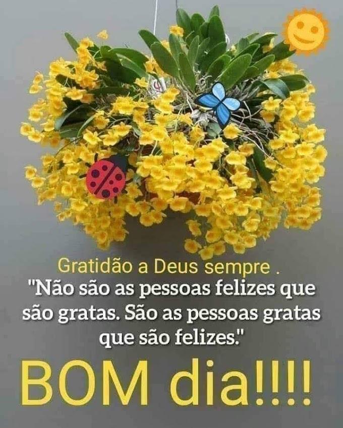 bom dia!...Gratidão a Deus, sempre...