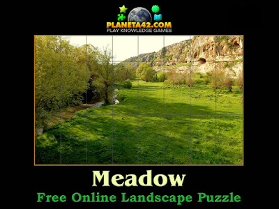 Meadow Puzzle
