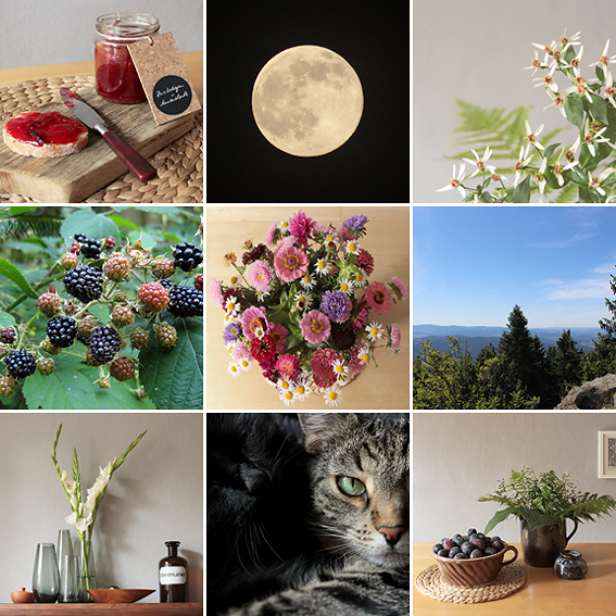 https://dieraumfee.blogspot.de/2016_09_01_archive.html
