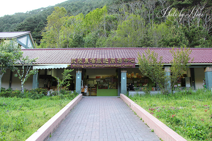 【武陵農場景點】兩天一夜旅遊行程推薦   妮喃小語