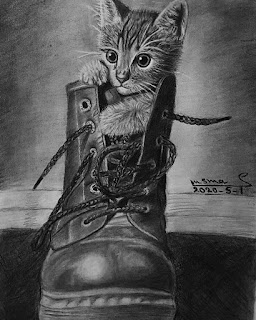رسم قط كيف ترسم قط قط رسم كيفية رسم قط رسم وجه قط