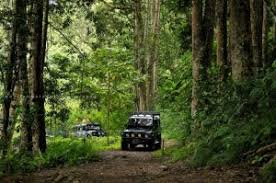 Bali Jungle Jeep Adventure, 5 Wisata Offroad Bali, Siap Menantang Si Jiwa Petualang!