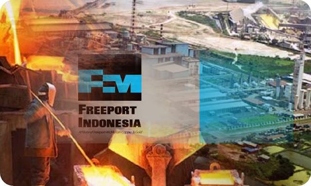 Pemerintah Belum Terbitkan Izin Export Mineral Konsentrat PTFI