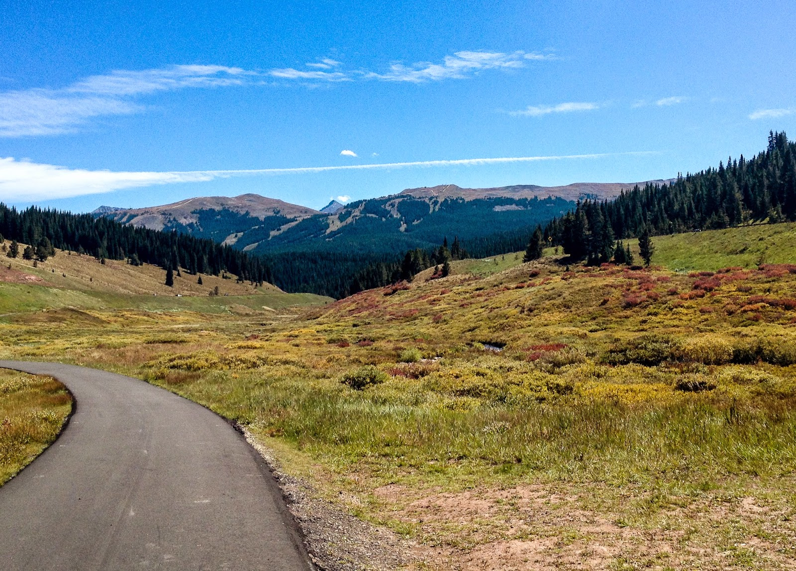 Bike path on Vail Pass. Photo by Laurie Decoteau