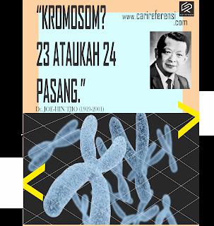 Ilmuwan Indonesia Mendunia! Kisah Joe-Hin Tjio, Seorang Peneliti Genetika Asal Indonesia Penemu Jumlah Kromosom Manusia.