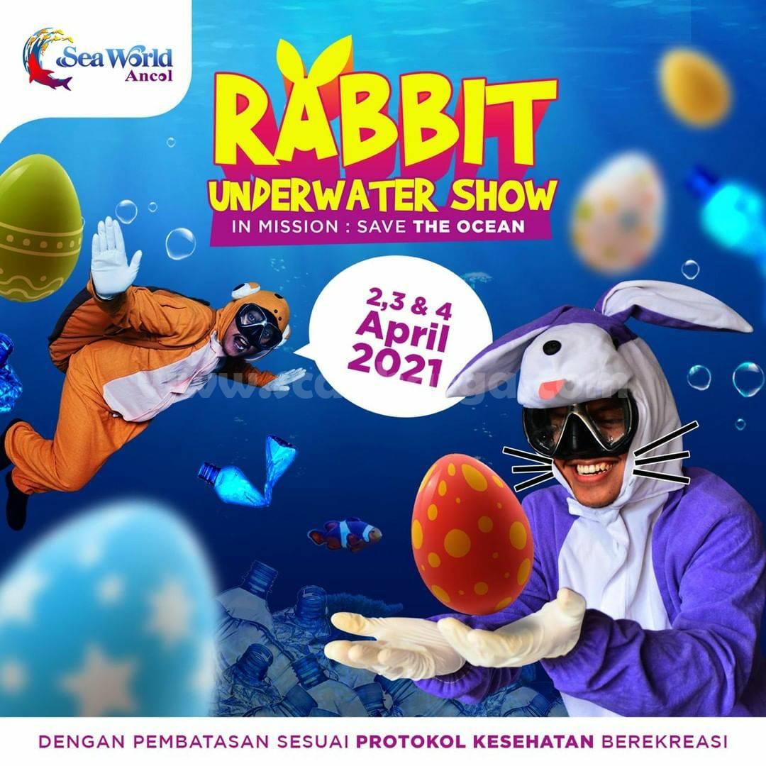 SEA WORLD ANCOL Proudly Present RABBIT UNDERWATER SHOW
