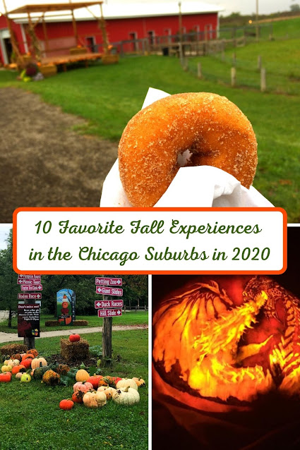 10 Favorite Fall Experiences in the Chicago Suburbs in 2020
