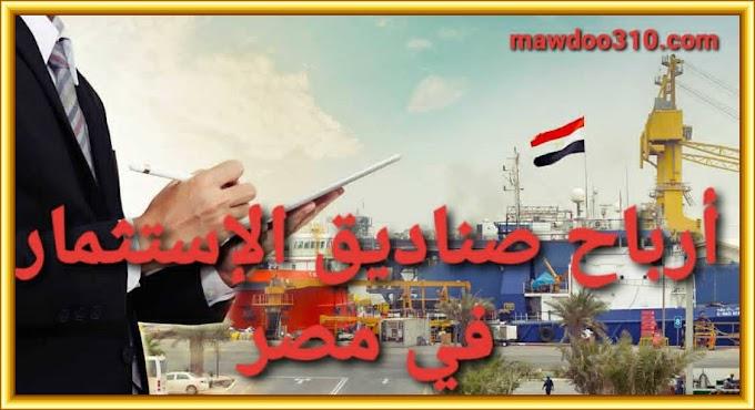 أرباح صناديق الإستثمار في مصر (تقييم أداء الصناديق الإستثمارية المصرية)