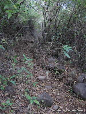 Vereda en la Sierra del Madroño