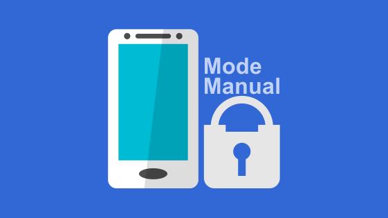 Jaringan dalam mode manual