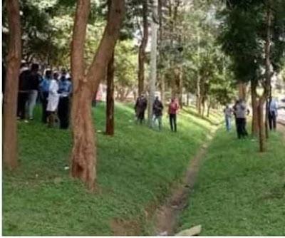 The Suicidal scene outside UNHCR