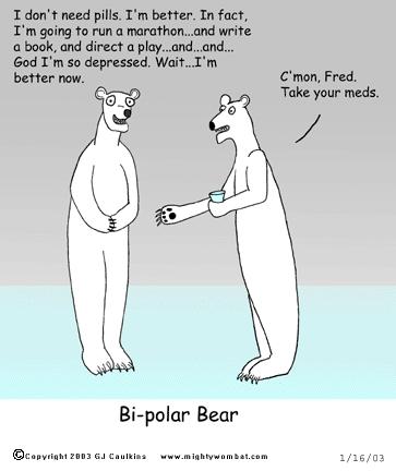 bipolar bear mood shifts meme
