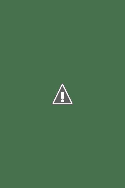 Pizza business idea