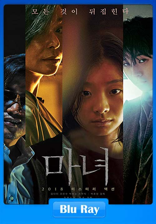The Subversion 2018 Hindi 720p BluRay ESubs Dual Audio Korean x264 | 480p 300MB | 100MB HEVC